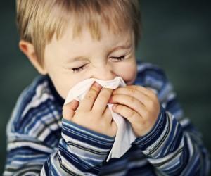 sneeze.ashx